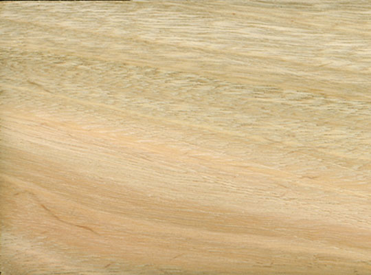 Imported Hardwood Lumber ~ Imported hardwoods quilted eucalyptus newport nautical