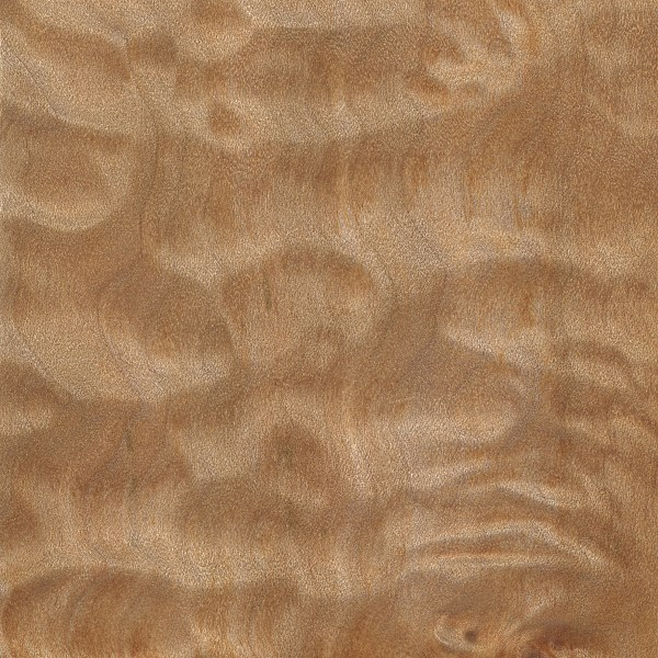quilted-maple-s
